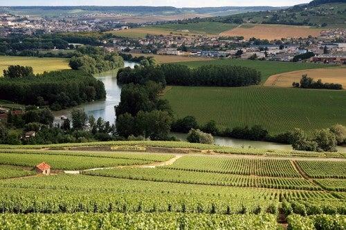 Recorrido por la región vinícola de Champaña, Francia