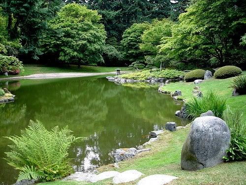 jardinzen4