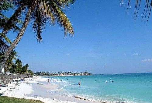 Vacaciones en Aruba: entre las mejores playas del mundo