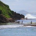 La isla de Madagascar y su notable biodiversidad