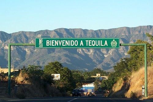 El municipio de Tequila, México: agave, destilerías y tradición