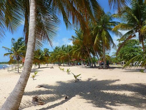 Playas de Isla de Vieques