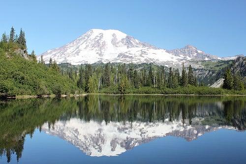 Visitar el Parque Nacional Monte Rainier, Washington, Estados Unidos