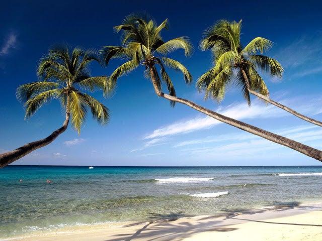 Una Joya perdida: La isla de Barbados