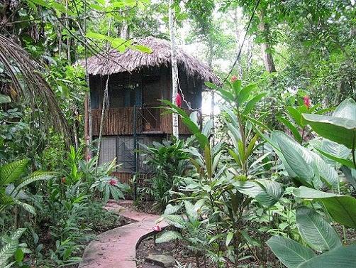 El Panchán, un hotel mítico en el Palenque mexicano