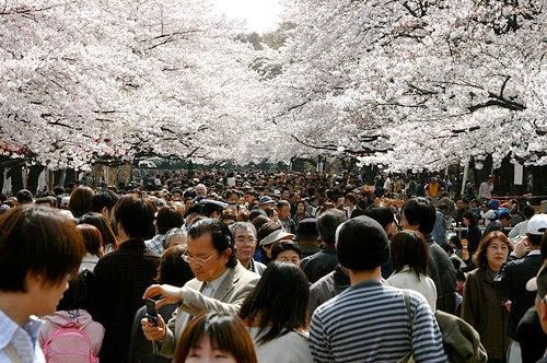 Parque de Ueno-Koen