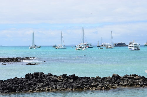 Visitar las Islas de Galápagos