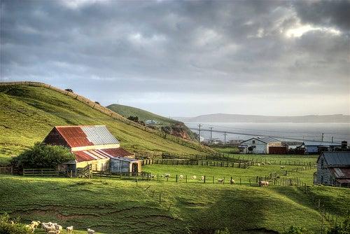 Las Islas Chatham están a la orilla del mundo