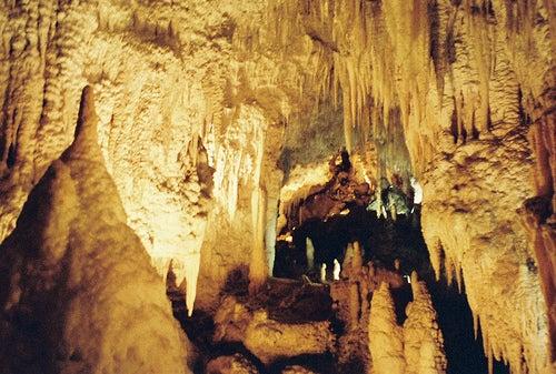 Las Cuevas de Waitomo, el hogar de los gusanos de luz