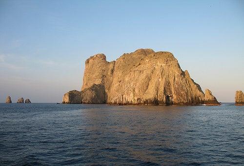 Isla de Malpelo: el santuario colombiano de vida marítima