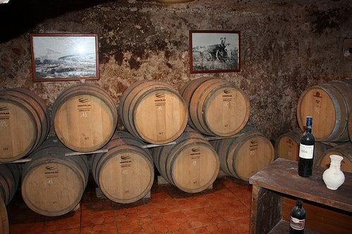 La ruta del vino en Cerdeña