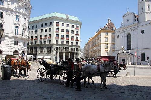 Guía básica para visitar la ciudad de Viena