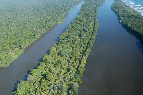 canales-parque-tortuguero-costa-rica
