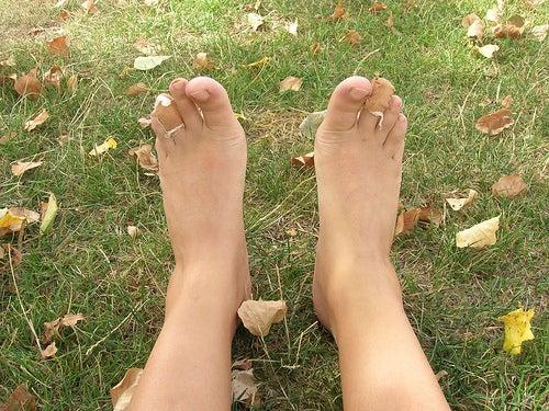 pies-de-un-peregrino