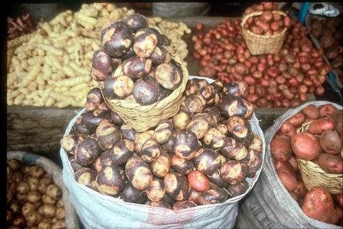 El ajiaco contiene tres variedades de papa.