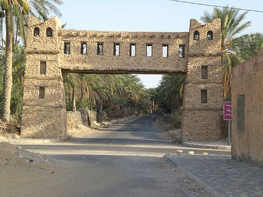 Kebili, un oasis en Túnez.