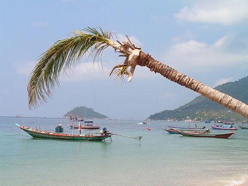 Koh Tao, un paraíso en Tahilandia