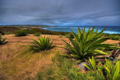 Barbados_2