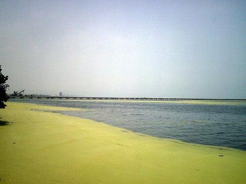 Los lagos más grandes de América_lago maracaibo