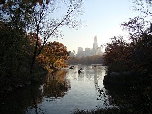 Los parques urbanos más bonitos del mundo