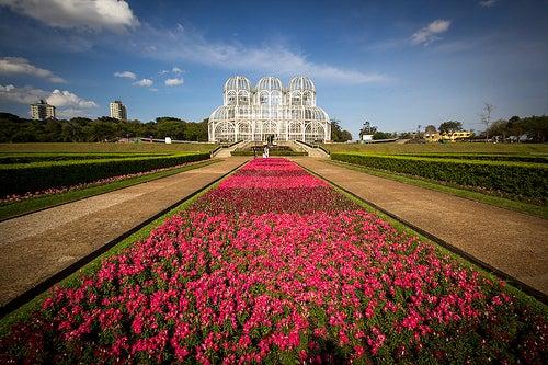 jardin-botanico-de-curitiba-brasil