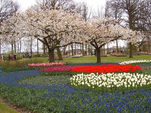Algunos de los jardines m s bonitos del mundo un placer for Jardin keukenhof