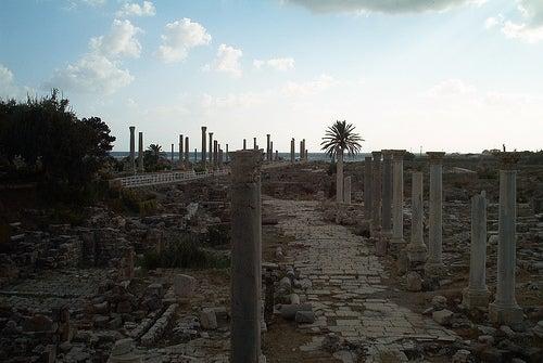 tyro-libano