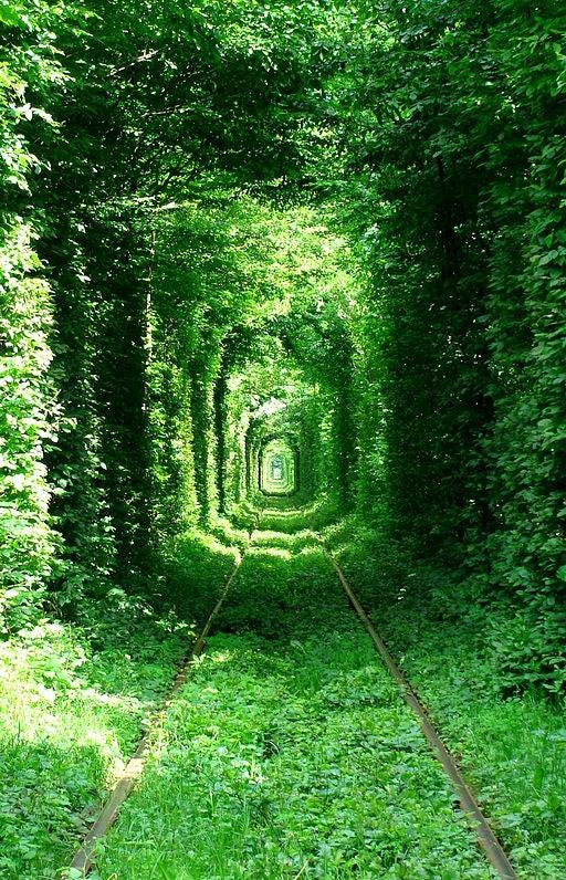 El Túnel del Amor.