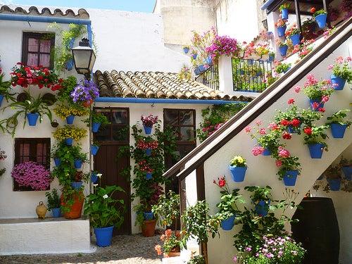 La ciudad de c rdoba la reina mora de andaluc a - Fotos patio andaluz ...