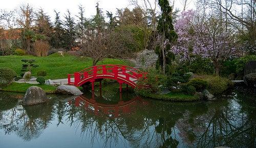 jardin-japones-toulouse