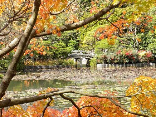 templo-ryoan-ji-kioto