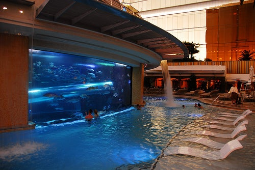 Piscina en el Golden Nugget.