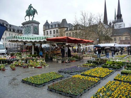 plaza-de-luxemburgo