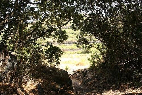 espacios-naturales-pantelleria