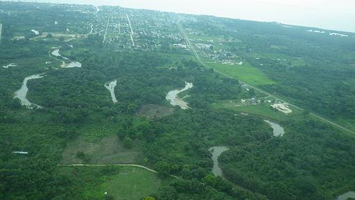 Las maravillosas selvas de Belice