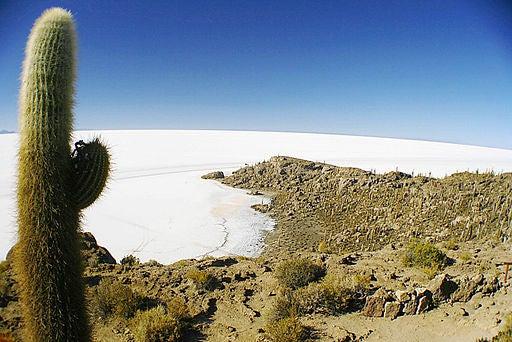 Isla del pescado, en Bolivia