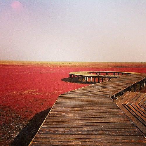 La Playa Roja en China, un lugar mágico