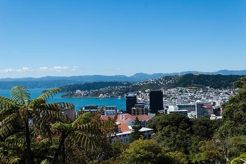 Viajar a Wellington en Nueva Zelanda, un paraíso para los sentidos