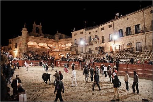 carnavales del toro ciudad rodrigo
