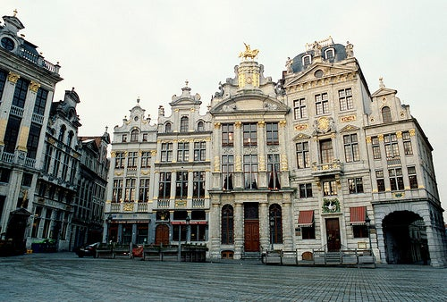 pigeon grand place bruselas