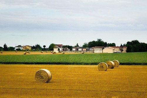 Emilia Romagna en Italia, una región que te va a sorprender