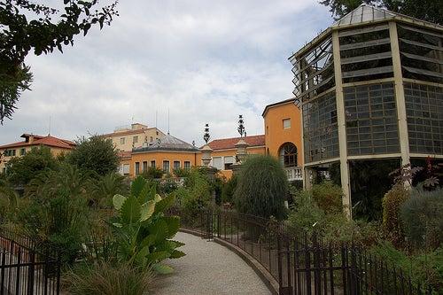 jardin botanico de padua 2