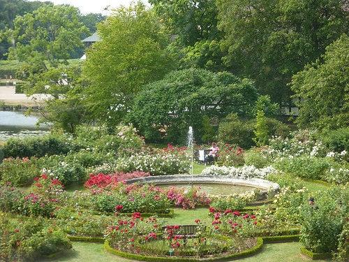 jardin de rosas castillo de egeskov