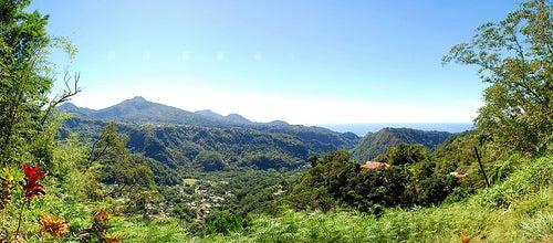 Dominica 1