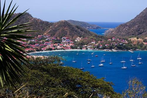 isla guadalupe 3