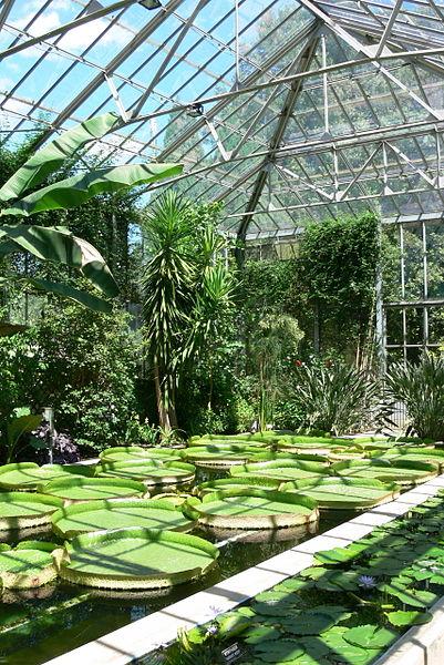 jardin villa taranto en italia 3