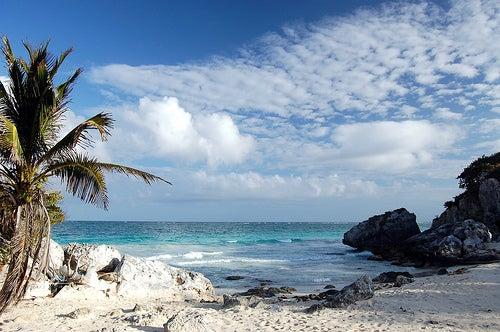 Aruba 2+