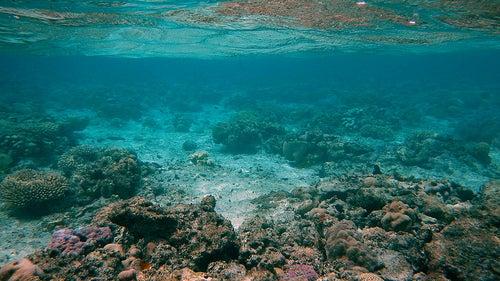 Islas Cook 8