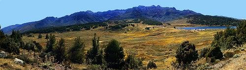 Los Andes 4