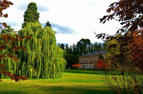 jardines palacio de aranjuez 2
